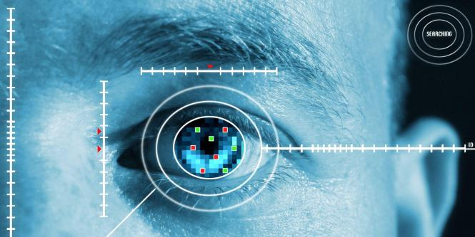 biometria-02-1.jpeg