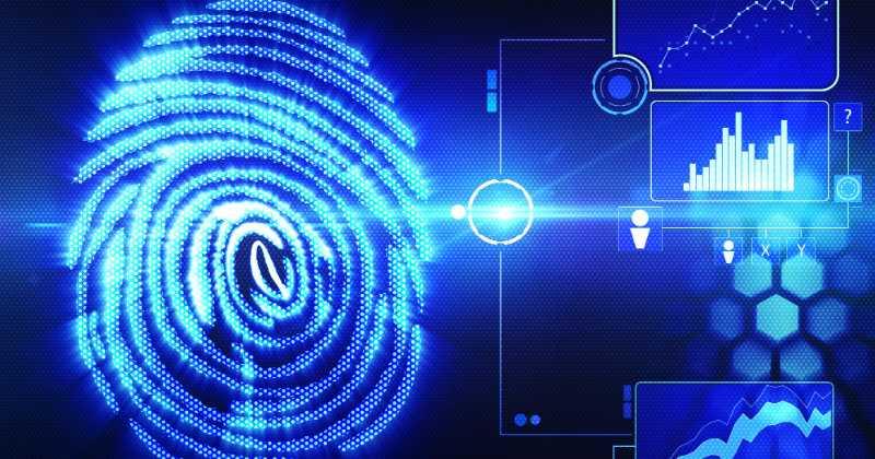 biometria-03.jpg