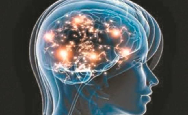 inteligencia-02.jpg