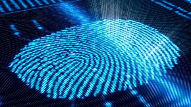 biometria-06.jpg