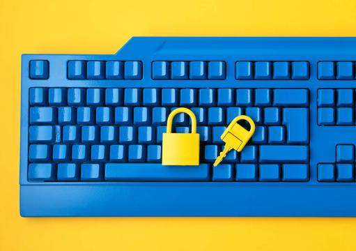 ciberseguridad-fraude.png